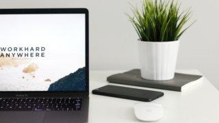 ノートパソコンと植物が載っているデスク